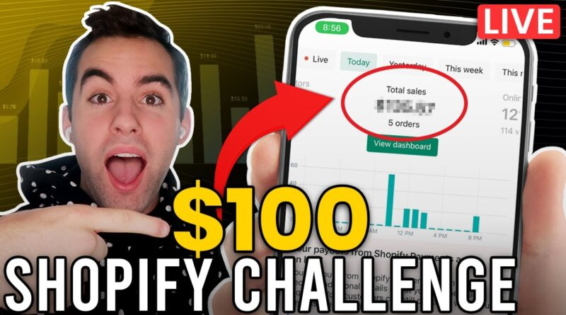 How To Shopify Drop Ship With $100 From Scratch (Beginner Strategy)
