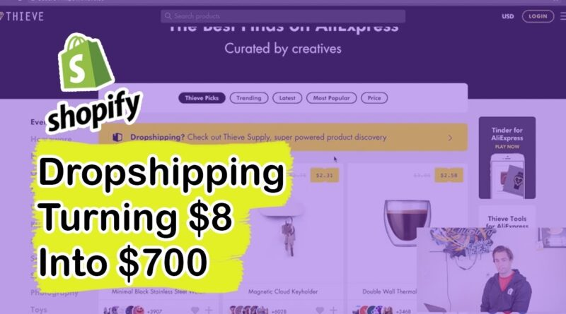Shopify Dropshipping – Turning $8 into $700